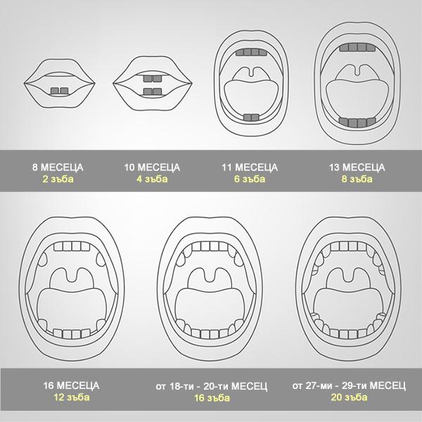 Поникване на млечни зъбки